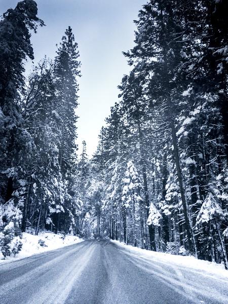 Blue Yosemite National Park