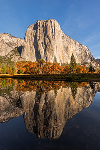 EL Capitan and fall colors reflected in the Merced river