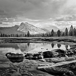 Tuolumnie Meadows
