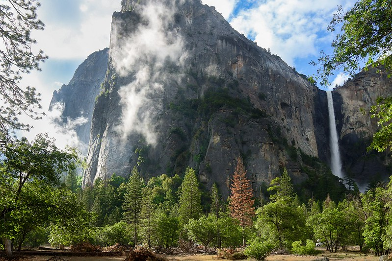 Cathedral Rocks and Bridalveil Falls.