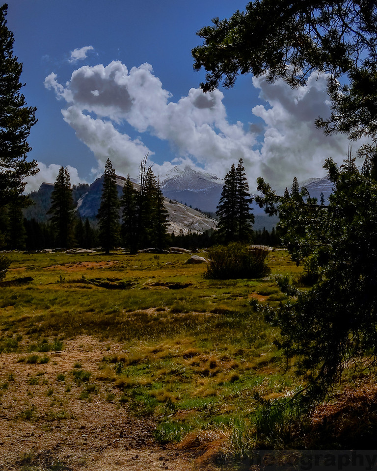 Tuolumne Meadows: Lembert Dome and Mount Dana View