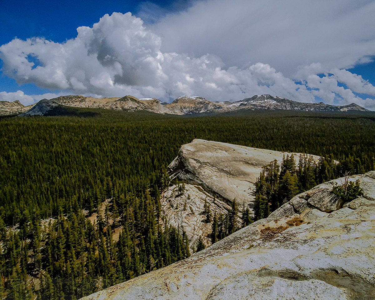 Ragged Peak, Sheep Peak and Mount Conness from Lembert Dome