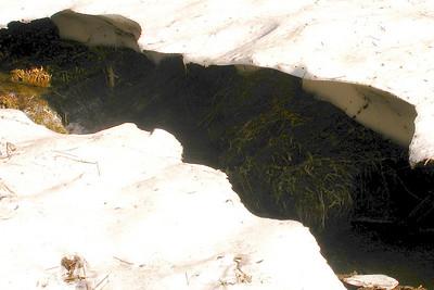 Lukens Lake 2008