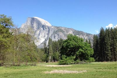 Yosemite May 1 2013