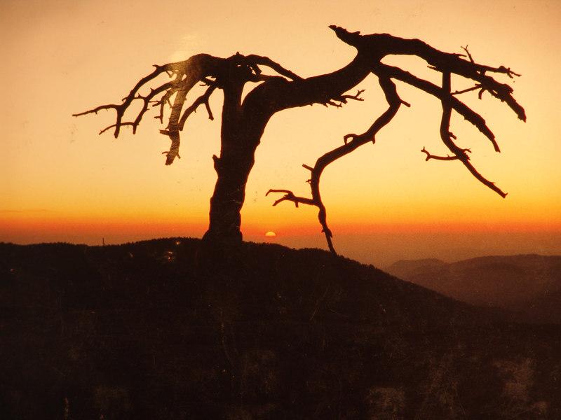 Sentinal Dome Sunset, Yosemite