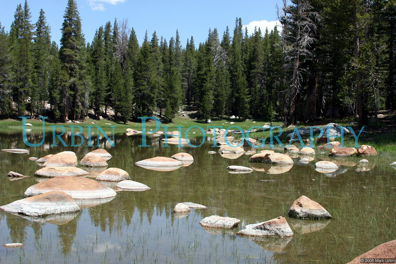 """A shallow lake in Yosemite I like to stop at on the way to the High Country. This photo is part of my book, <a href=""""http://www.blurb.com/bookstore/detail/319400"""">Yosemite: A State of Mind</a>."""