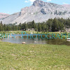 A small lake in the Yosemite High Country. These are filled with melted snow run off, so they are quite cold.