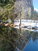 Riverbank Yosemite winter 1-5