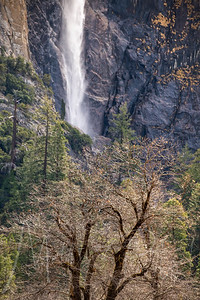 Yosemite Valley - Bridal Veil Falls Winter