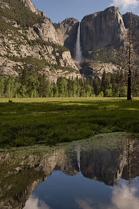 Yosemite Falls, Meadow and Pool