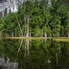 Yosemite Reflections 6410e