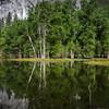 Yosemite Reflections 13