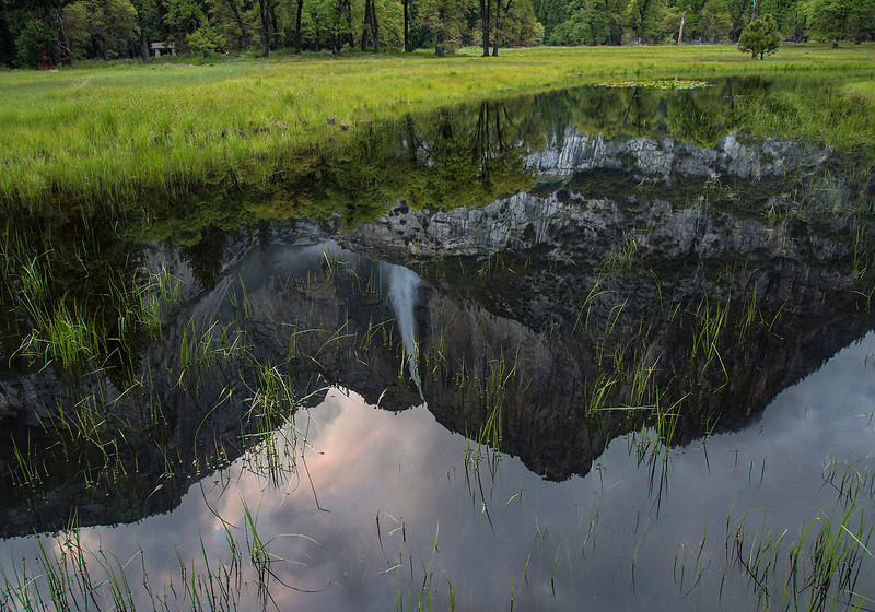 Walking in Cook's Meadow just as the sun was setting, I came across this reflection of Upper Yosemite Falls.
