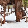 Yosemite 0577