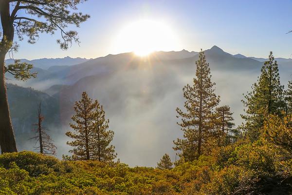 Nature in Yosemite Valley