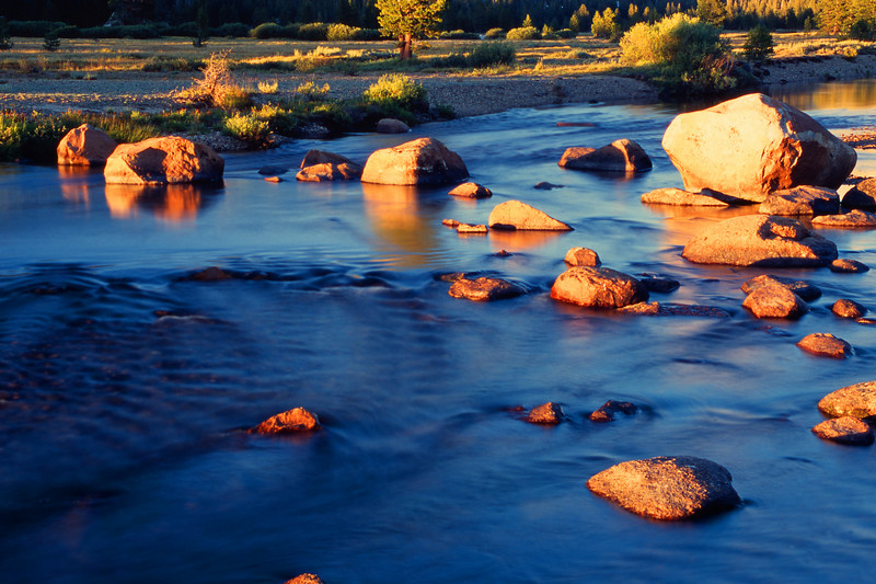 Tuolumne River, Evening Yosemite National Park California