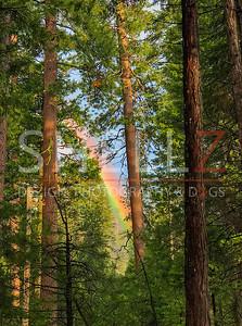 Mother Nature's Rainbow - Yosemite