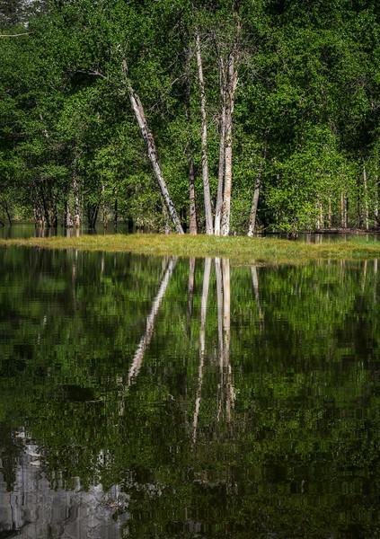 Yosemite Reflections 6408e