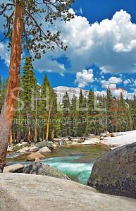 Meadows in Motion - Tuolomne Meadows, Yosemite