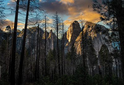 Richards___Yosemite