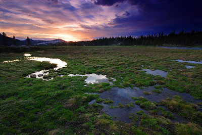 Last Light, Tuolumne Meadows Yosemite National Park California