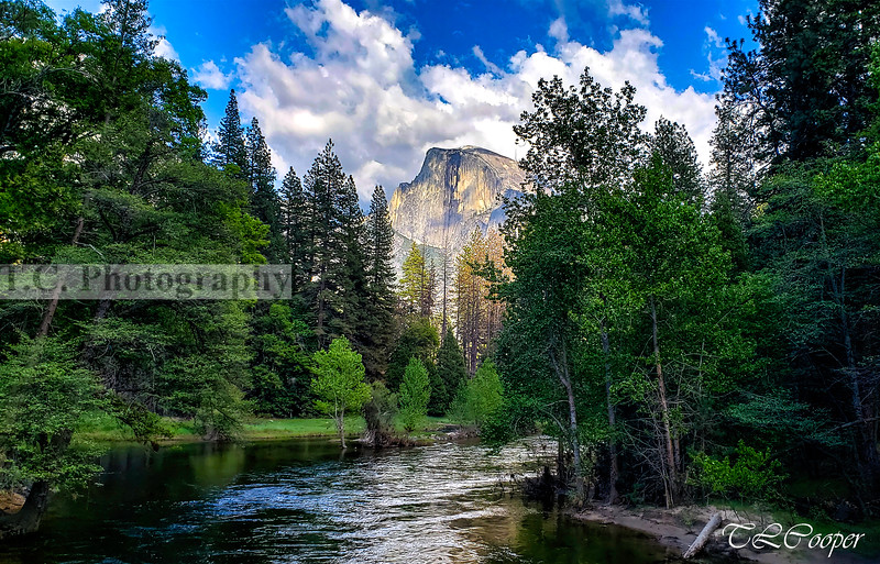 Half Dome above the Merced Rived in Yosemite N.P.