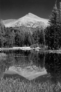 Mount Gibbs Reflection in B/W