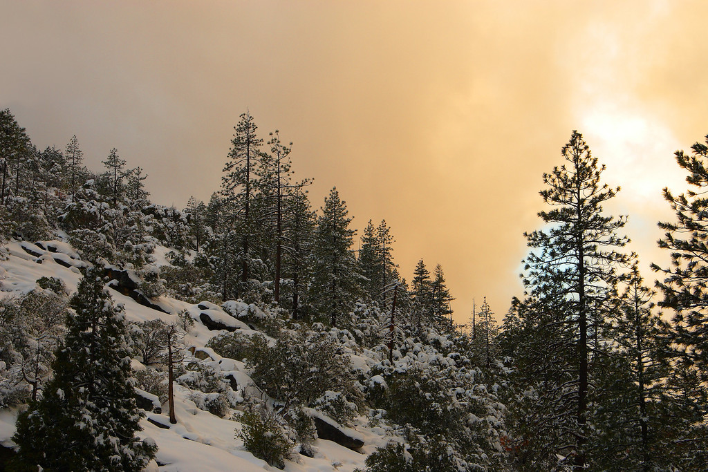 Ethereal Light at Sunset Yosemite National Park California