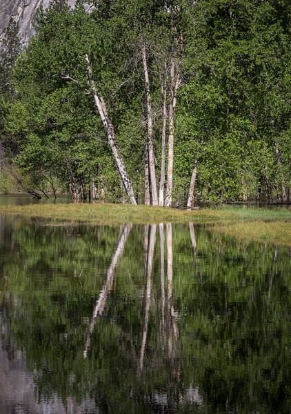 Yosemite Reflections 6403