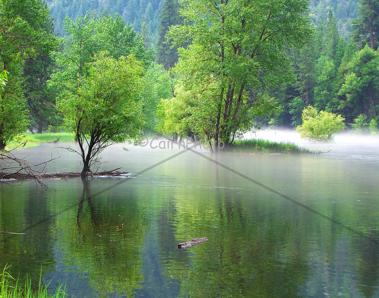 This is the Merced River in Yosemite Valley.  It was early in the morning when I noticed the thin layer of mist on the water.  I call it the misty Merced.