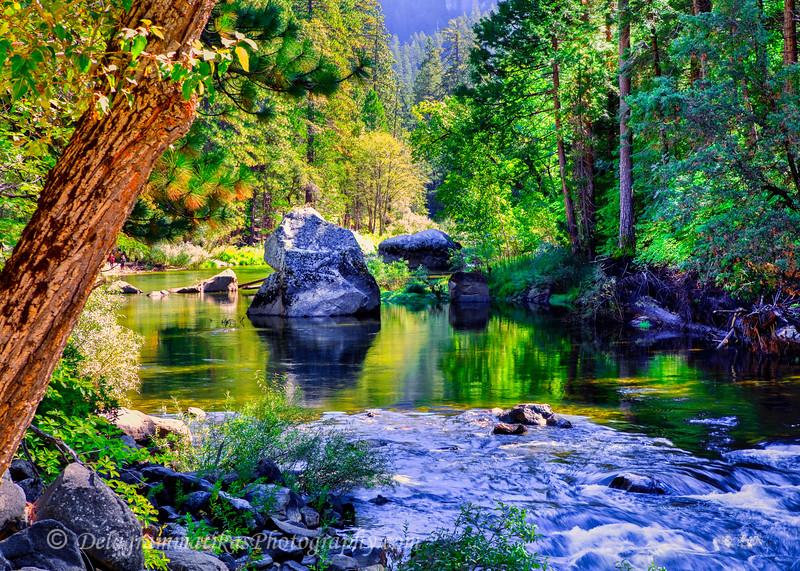 20111008_Yosemite_1782