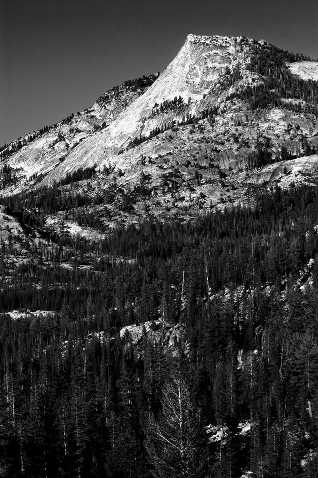 Tenaya Peak in B/W