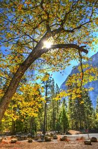 Yosemite_12
