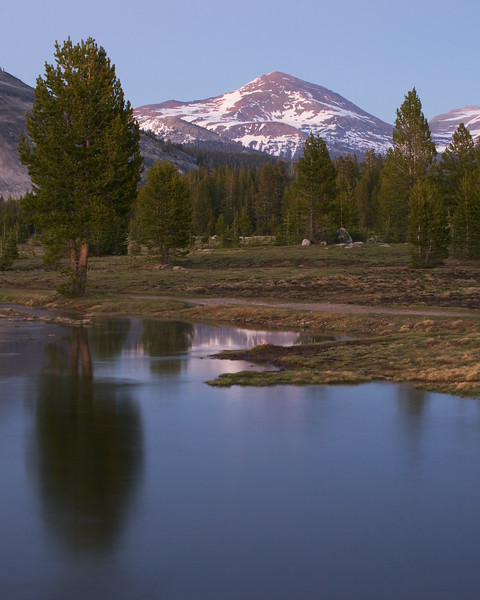 Mount Dana from Tuolumne at Dusk