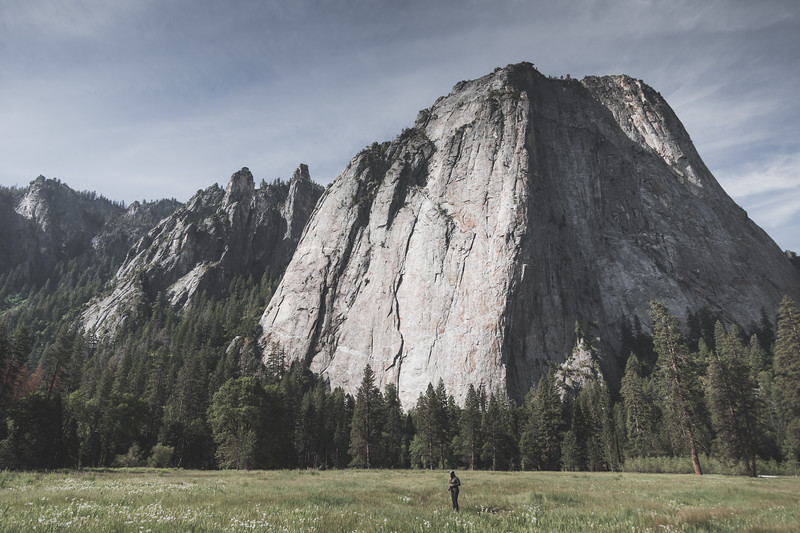 Hiking through El Cap Meadow