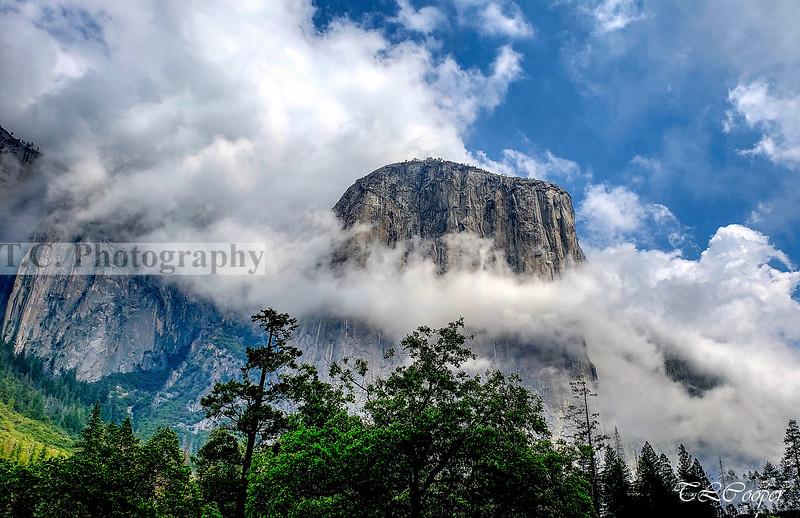 El Capitan in Yosemite N.P.