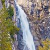 Wildcat Falls0132