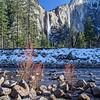 Yosemite 9903