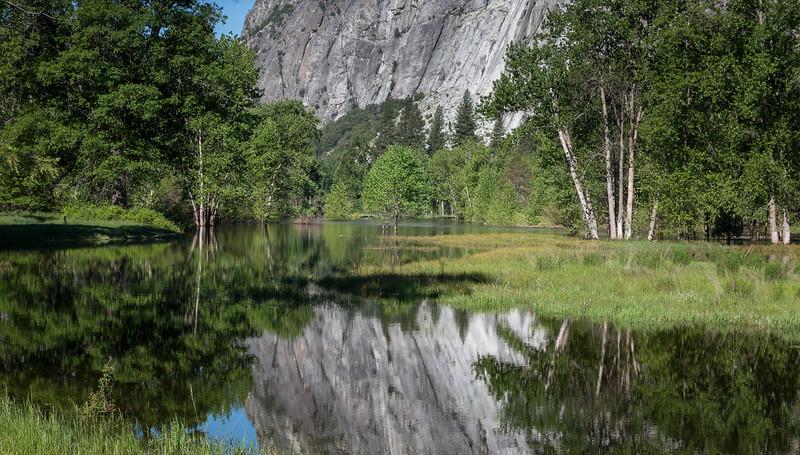 Yosemite Reflections 6392-1