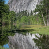 Yosemite Reflections 6392-1