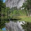 Yosemite Reflections 6