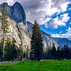 The Meadow in Yosemite