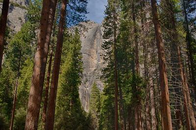 Upper and Lower Yosemite Fall 12-30-13