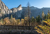Bridalveil Falls, Leaning Tower and Fall Color