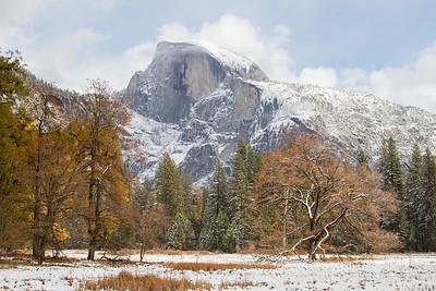 Yosemite National Park, California November 10, 2012 N10(101)