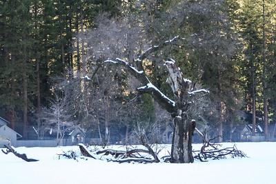 January 12, 2008 J12(17)