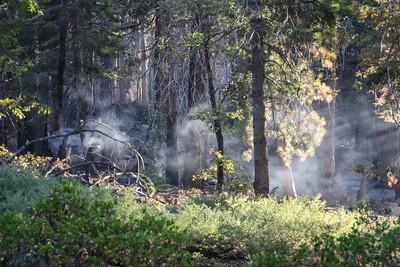 September 19, 2009 S19(1)