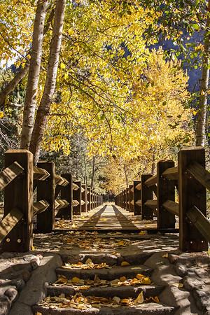 Yosemite Memories 2009