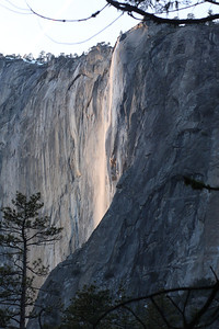 Yosemite National Park, California February 15, 2010 F15(19)