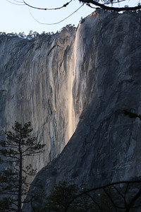 Yosemite National Park, California February 15, 2010 F15(18)